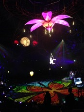 Dai Show Xishuangbanna China 2015 Big flower paint touch up and light